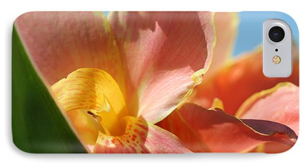 Dwarf Canna Lily Named Corsica Phone Case by J McCombie