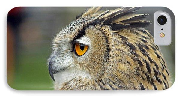 European Eagle Owl IPhone Case by Tony Murtagh
