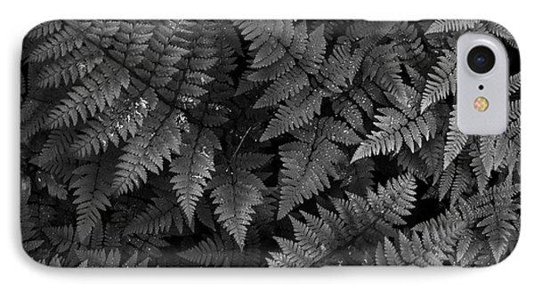 Ferns Phone Case by Steve Patton