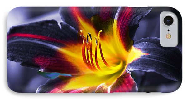 Flower Burst Phone Case by Gunter Nezhoda