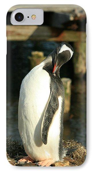 Gentoo Penguin IPhone Case