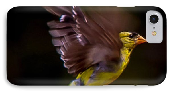 Gold Finch IPhone Case by Brian Williamson