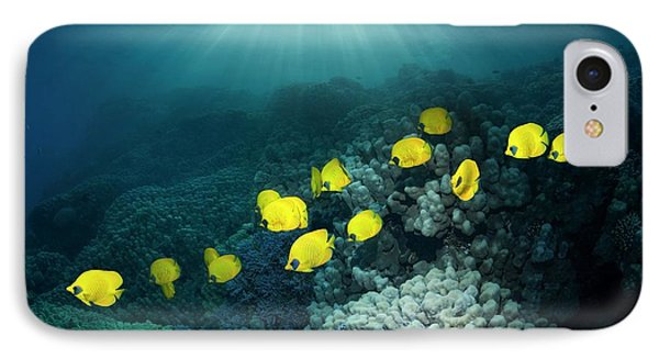 Golden Butterflyfish IPhone Case by Georgette Douwma