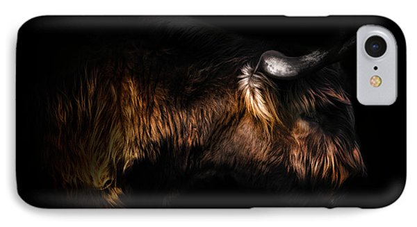 Highland Cow IPhone Case by Ian Hufton