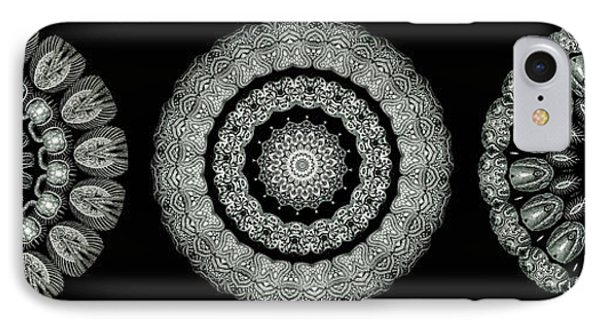 Kaleidoscope Ernst Haeckl Sea Life Series Black And White Set On Phone Case by Amy Cicconi