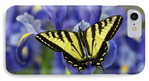 Male Western Tiger Swallowtail IPhone Case by Darrell Gulin