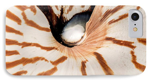 Nautilus Pompilius IPhone Case by Natural History Museum, London