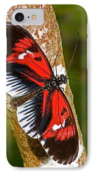 Piano Key Butterfly Phone Case by Millard H. Sharp