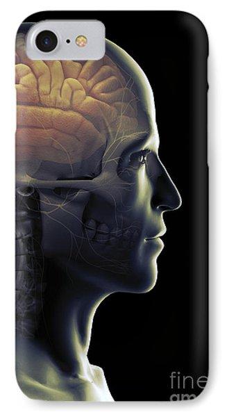 The Human Brain IPhone Case