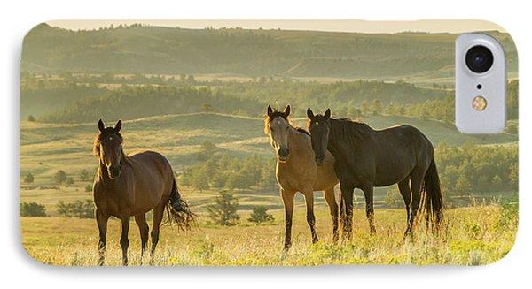 Usa, South Dakota, Wild Horse Sanctuary IPhone Case