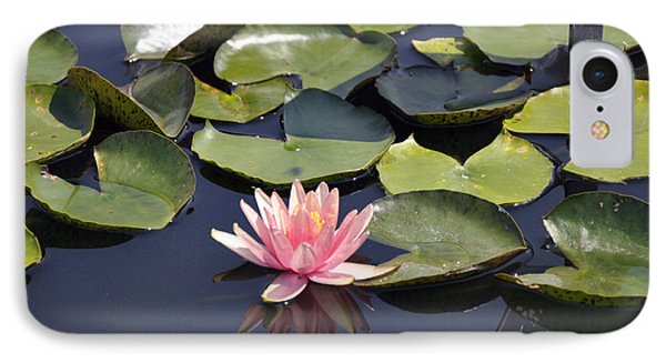 Water Lily IPhone Case by Dottie Branchreeves
