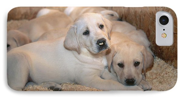 Yellow Labrador Retriever Puppies Phone Case by Linda Freshwaters Arndt