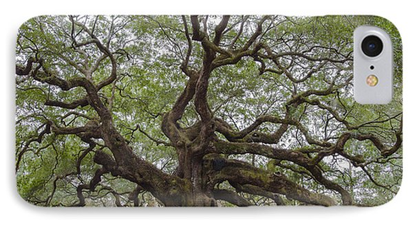 Sc Angel Oak Tree IPhone Case