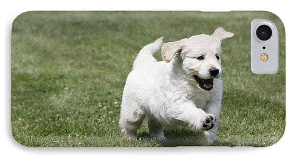 Golden Retriever Puppy Phone Case by John Daniels