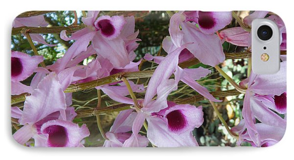 Orchids--dendrobium IPhone Case