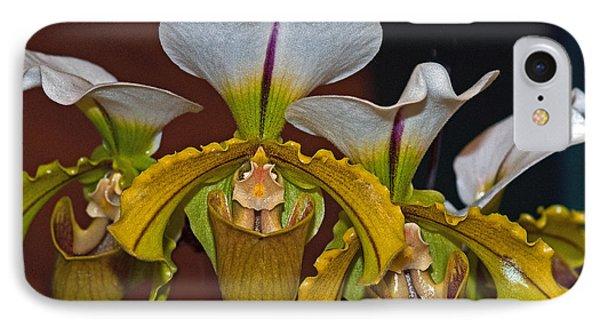 Paphiopedilum Orchid IPhone Case