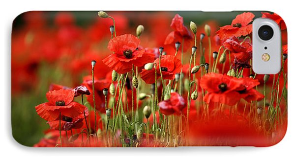 Poppy Dream IPhone Case by Nailia Schwarz