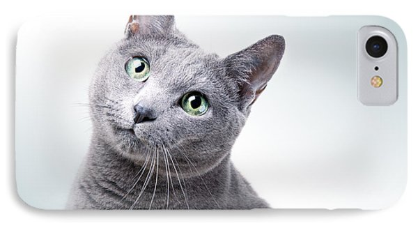 Russian Blue Cat IPhone Case by Nailia Schwarz