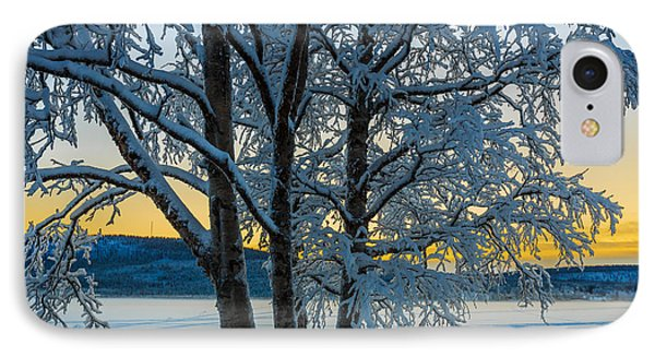 Snow Covered Trees In Extreme Cold IPhone Case by Panoramic Images