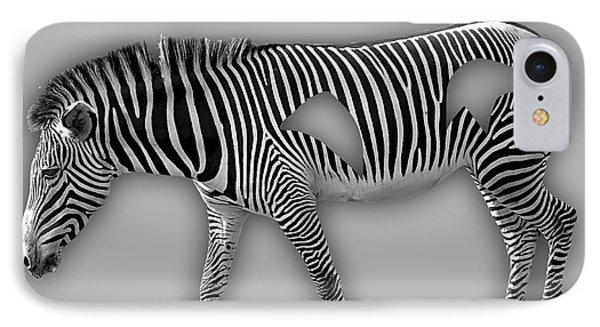 Zebra Collection IPhone Case