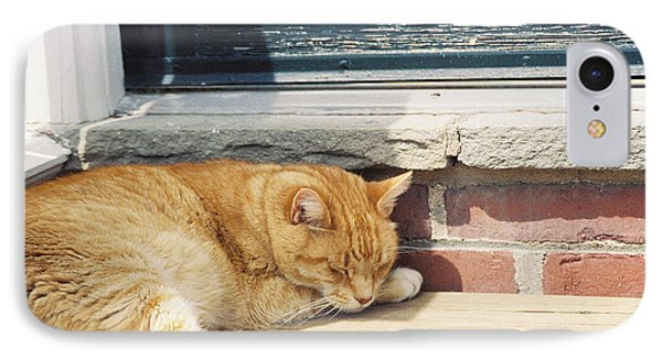 #665 03 Catnap  Phone Case by Robin Lee Mccarthy Photography