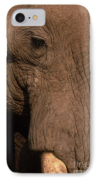 African Elephant IPhone Case by Art Wolfe