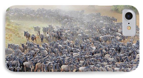Blue Wildebeest Migration IPhone Case by Bildagentur-online/mcphoto-schulz