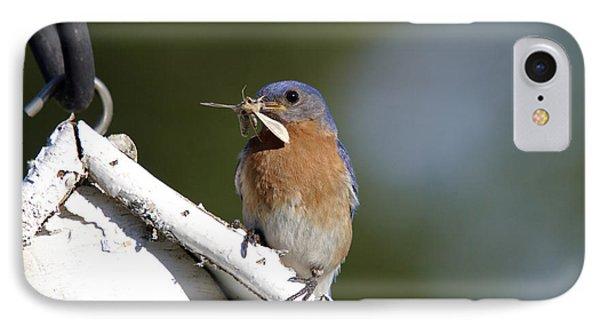 Eastern Bluebird Phone Case by Linda Freshwaters Arndt