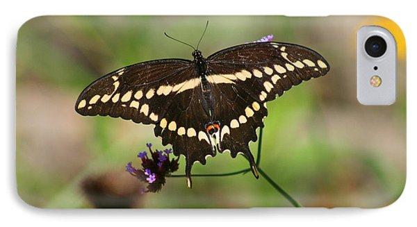 Giant Swallowtail Butterfly Phone Case by Karen Adams
