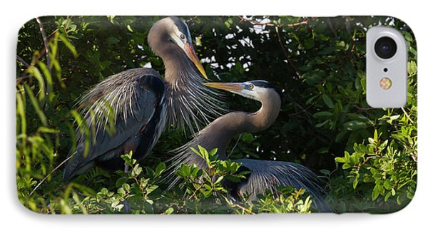 Great Blue Heron (ardea Herodias IPhone Case by Larry Ditto