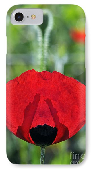 IPhone Case featuring the photograph Poppy Flower by George Atsametakis