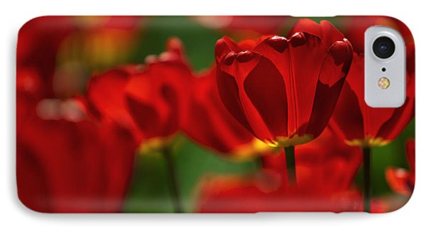 Red And Yellow Tulips IPhone Case by Nailia Schwarz