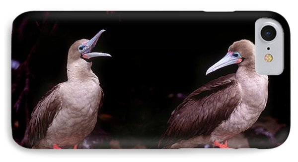 South America, Ecuador, Galapagos IPhone Case