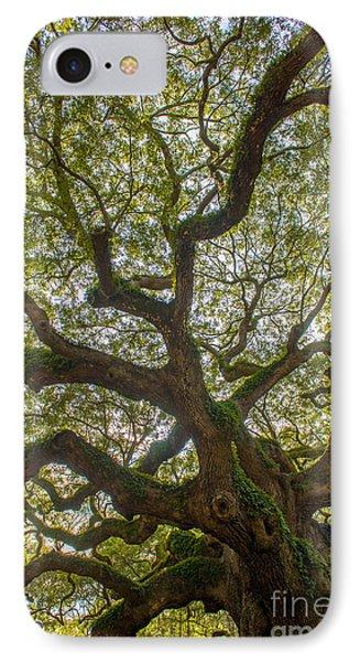 Island Angel Oak Tree IPhone Case