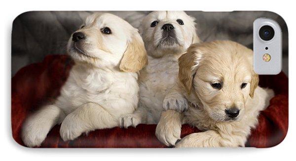 Festive Puppies Phone Case by Angel  Tarantella