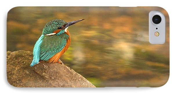 IPhone Case featuring the photograph Kingfisher by Paul Scoullar