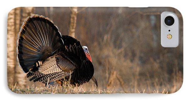Male Eastern Wild Turkey Phone Case by Linda Freshwaters Arndt
