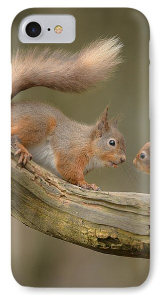 Red Squirrel IPhone Case by Andy Astbury