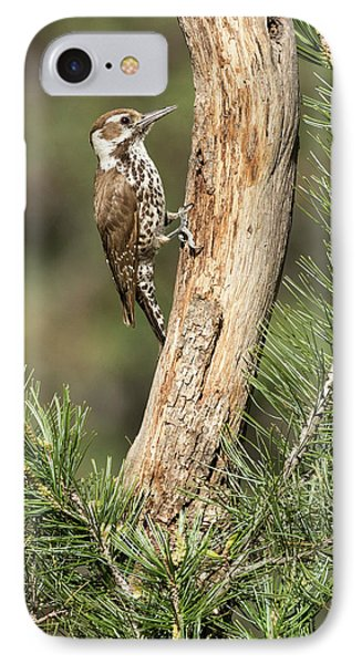 Usa, Arizona, Santa Rita Mountains IPhone Case
