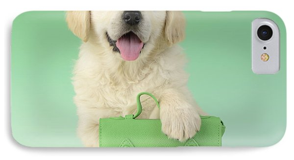 9 - 5 Retriever Dp914sq IPhone Case by Greg Cuddiford