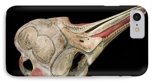 Ink Scrimshaw On Dolphin Skull IPhone Case by Natural History Museum, London