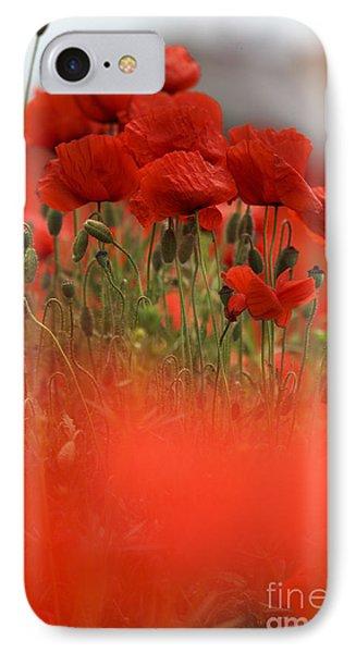Red Poppy Flowers IPhone Case by Nailia Schwarz