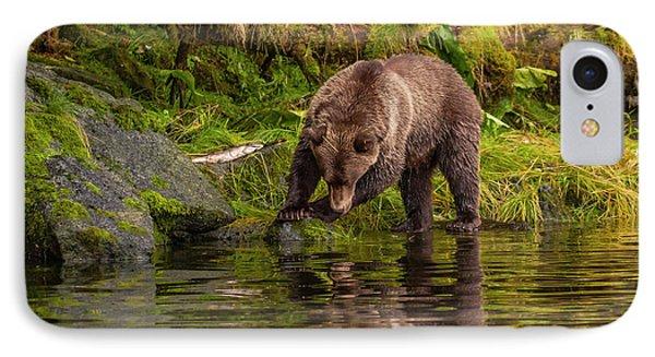Usa, Alaska, Tongass National Forest IPhone Case