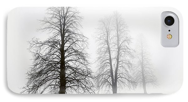 Winter Trees In Fog IPhone Case by Elena Elisseeva