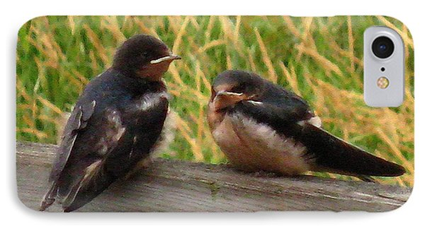 A Baby Barn Swallow Duo Waits Patiently For Lunch IPhone Case