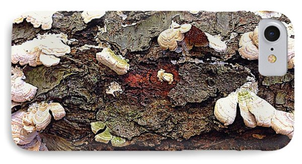 A Bark Story  IPhone Case by Delona Seserman