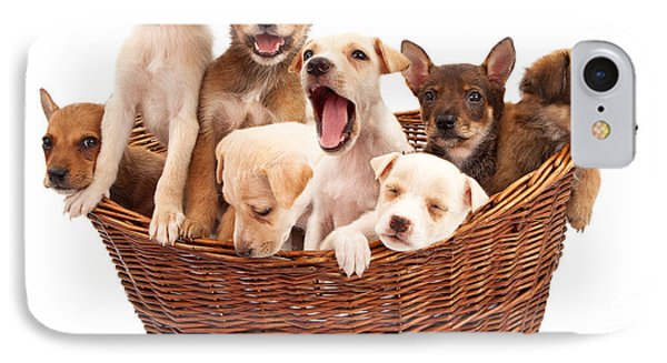 A Basket Of Puppies  IPhone Case by Susan Schmitz