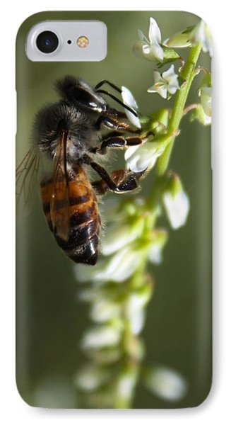 IPhone Case featuring the photograph A Bee About His Business by Richard Stephen