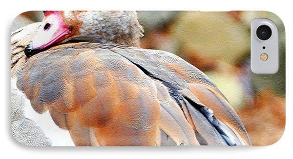 birds eye case 21 sizmek inc 1 with sizmek direct response, birds eye sales take flight with 35x better roi case study pinnacle foods' birds eye ® voila is a line of frozen.