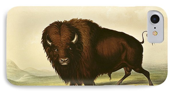 A Bison IPhone Case by George Catlin